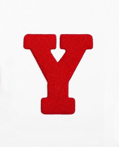Lettre Y rouge - grande