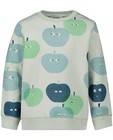 Sweats - Lichtgroene sweater met print