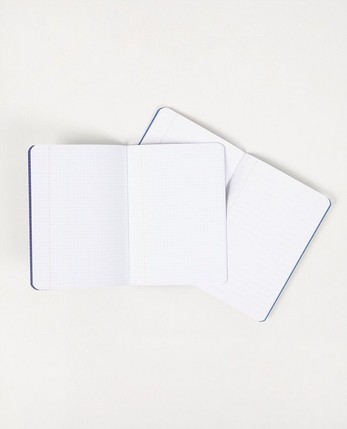 Gadgets - Set van 2 schriftjes Stratier
