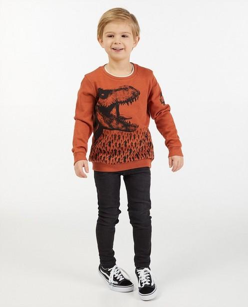 Sweater met print Jurrassic Park - stretch - Jurassic Park