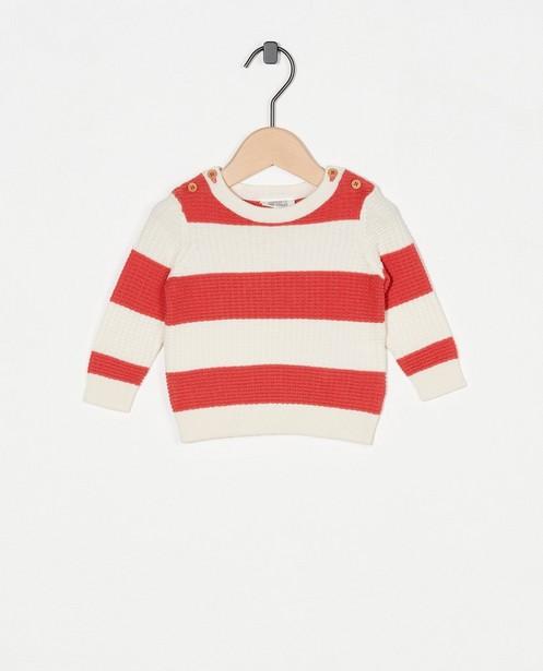 Pull en coton bio rayé - fin tricot - Newborn