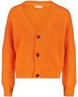 Cardigans - Oranje cardigan Hampton Bays