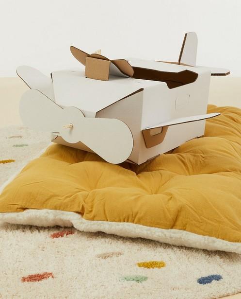 Gadgets - Kartonnen vliegtuigje Mister Tody