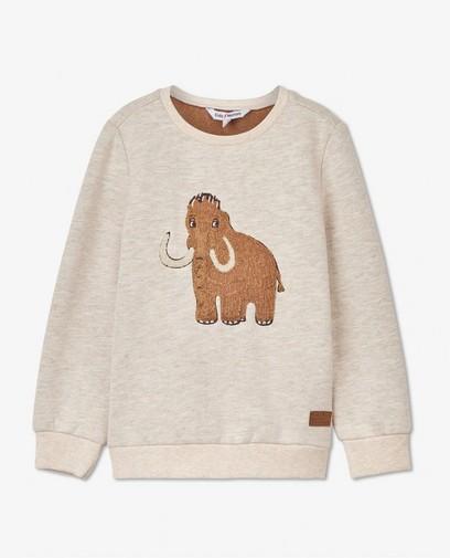 Beige sweater met print