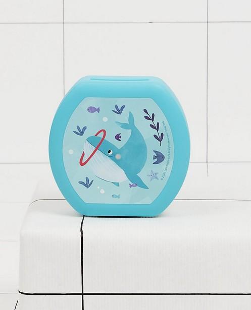 Boîte à snacks bleue Amuse your Day - à imprimé à baleines - JBC