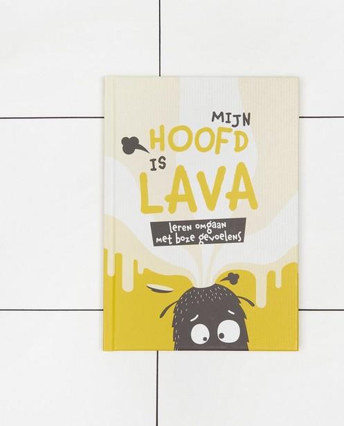 Boek 'Mijn hoofd is lava' - Steven Gielis - JBC