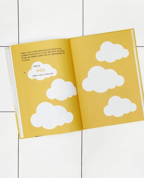 Gadgets - Boek 'Mijn hoofd is lava'