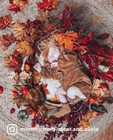 Tenue d'automne doux - null -
